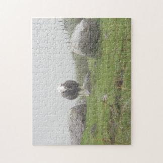 Casse-tête des moutons dans le secteur de lac puzzle