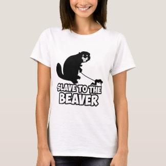 Castor drôle t-shirt
