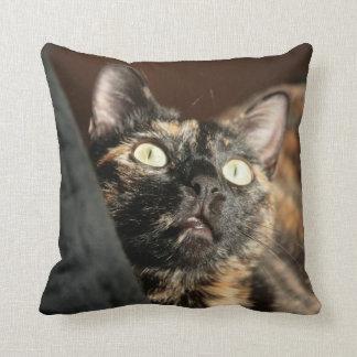 cat tortie pillow oreillers