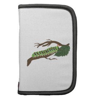Caterpillar Agendas