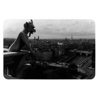 Cathédrale de la France Paris Notre Dame le diable Magnets Rectangulaire