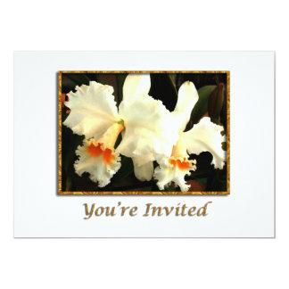 Cattleyas blanc pelucheux faire-parts