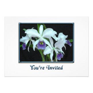Cattleyas fantomatique faire-parts