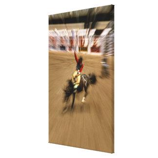 Cavalier de Bronco (bourdonnement) Toiles