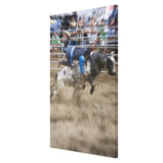 Cavalier de Taureau jeté outre du taureau Toiles