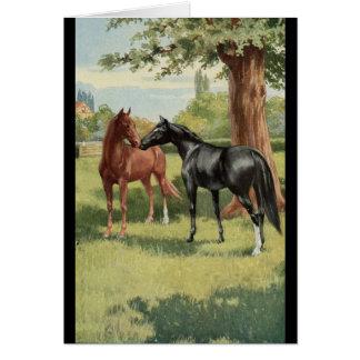 Cavalier vintage d'étalon de jument de cheval cartes de vœux