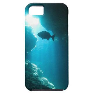 Caverne et poissons bleus clairs coque iPhone 5