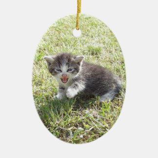Ce chaton lutte pour la liberté ornement ovale en céramique