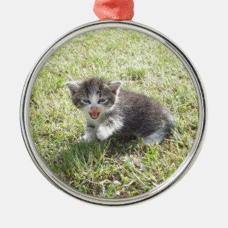 Ce chaton lutte pour la liberté ornement rond argenté