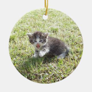 Ce chaton lutte pour la liberté ornement rond en céramique