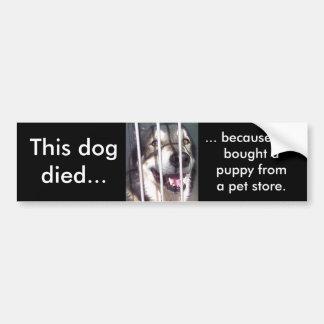 Ce chien est mort autocollant de voiture