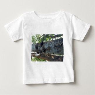 Ce qui se développe sur des arbres t-shirt