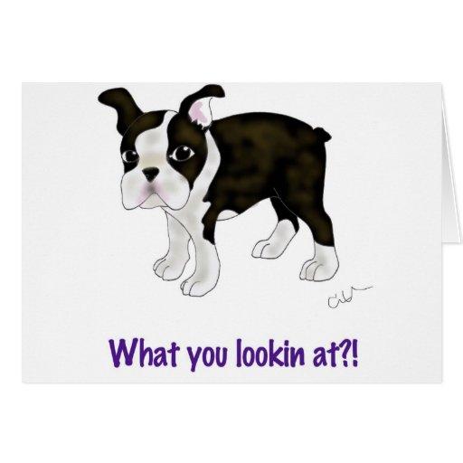 Ce qui vous regardant ? cartes de vœux