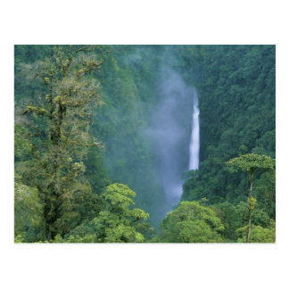 Central de Cordillère, automnes du Congo d'ange), Carte Postale