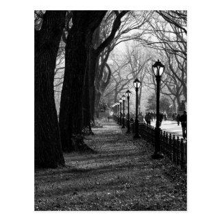 Central Park à New York City Carte Postale