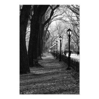 Central Park à New York City Photo Sur Toile