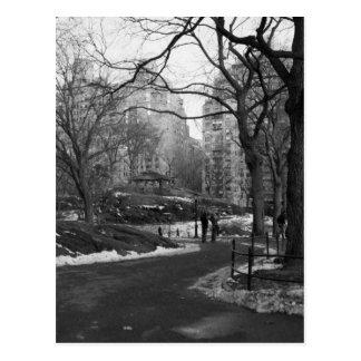 Central Park noir du blanc NY Carte Postale