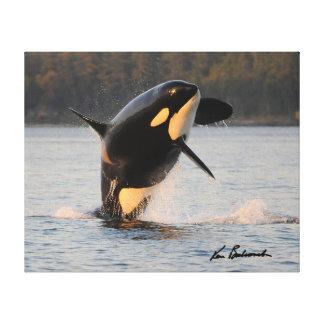 Centre pour la recherche de baleine - copie de toiles