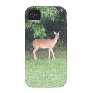 Cerfs communs dans les bois étui vibe iPhone 4