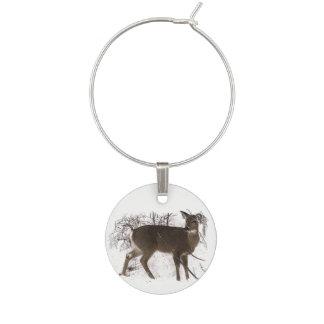 Cerfs communs de Brown dans le marque - verre de Marque-verres