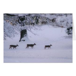 Cerfs communs marchant dans le carte pour notes de