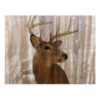 Cerfs communs primitifs occidentaux en bois de carte postale