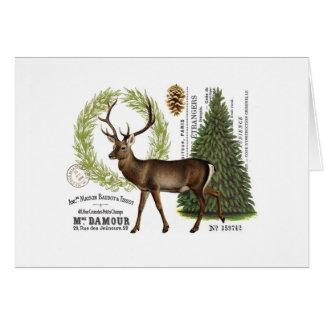 cerfs communs vintages modernes d'hiver de région cartes de vœux