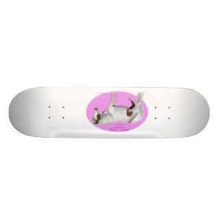 Cerise d'arc-en-ciel la planche à roulettes miniat plateau de skate