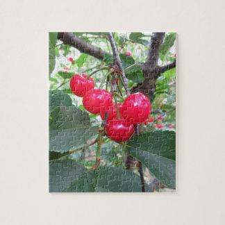 Cerises rouges de Montmorency sur l'arbre dans le Puzzle