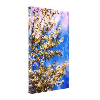 Cerisier fleurissant toile