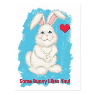 Certain lapin vous aime Valentine Cartes Postales