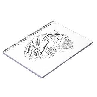 Cerveau vintage carnets à spirale
