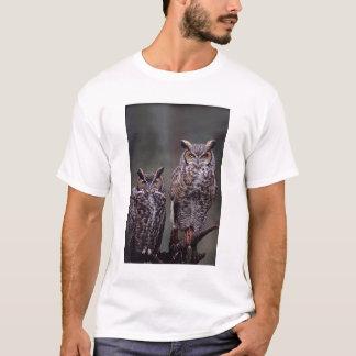 Ces grands hiboux à cornes (virginianus de Bubo), T-shirt