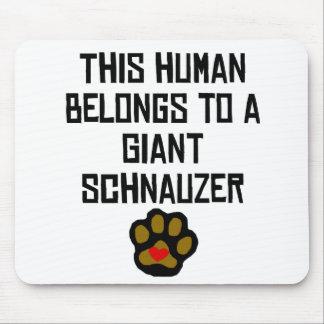 Cet humain appartient à un Schnauzer géant Tapis De Souris