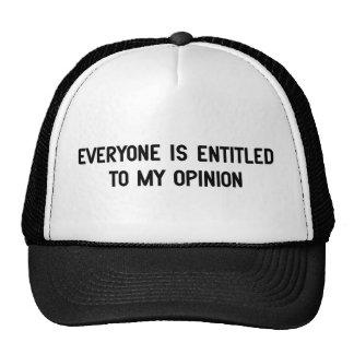 Chacun a droit à mon avis casquettes