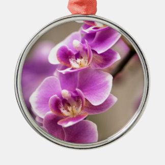 Chaîne de fleur rose-foncé d'orchidée de ornement rond argenté