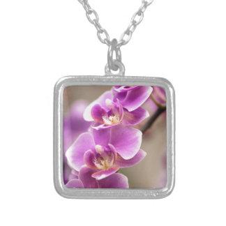 Chaîne de fleur rose-foncé d'orchidée de pendentif carré