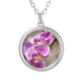 Chaîne de fleur rose-foncé d'orchidée de pendentif rond