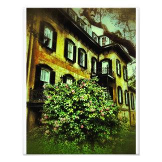Chambre de la savane sur la rue de Gaston Art Photographique