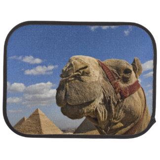 Chameau devant les pyramides de Gizeh, Egypte, Tapis De Sol