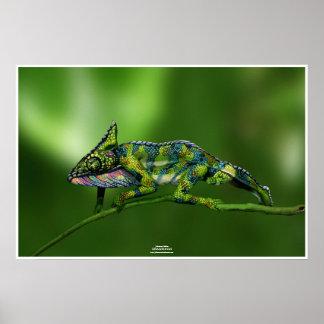 Chameleon by Johannes Stötter Posters
