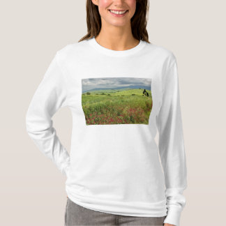 Champ agricole, région de la Toscane de l'Italie T-shirt