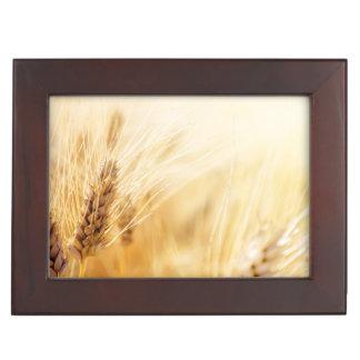 Champ de blé boîte à souvenirs