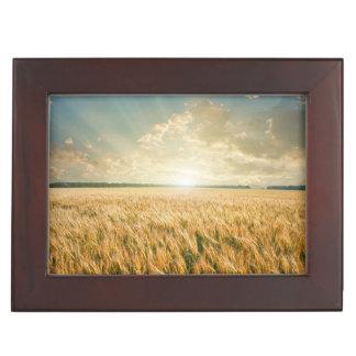 Champ de blé sur le coucher du soleil boîte à souvenirs