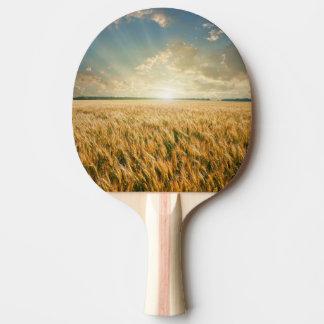 Champ de blé sur le coucher du soleil raquette tennis de table