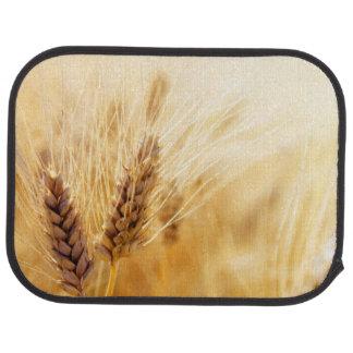 Champ de blé tapis de voiture