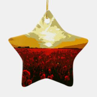 Champ de pavot ornement étoile en céramique