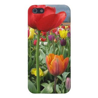 Champ de tulipes étui iPhone 5