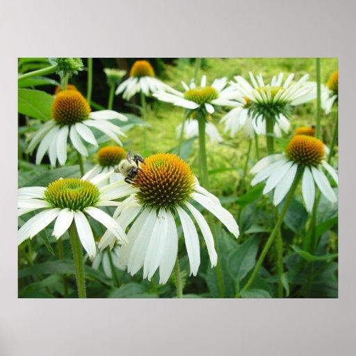 champ des fleurs et de l'affiche d'abeille