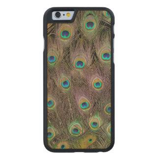 Champ des plumes de paon coque en érable iPhone 6 case
